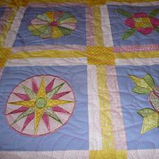 Carol's Embroidered Quilt Blocks Quilt