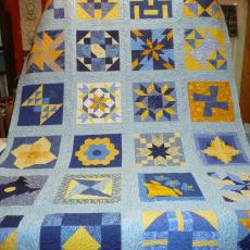 Oxbow Sampler Quilt Project