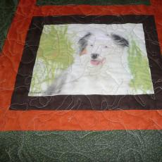 Lois's Dog Quilt