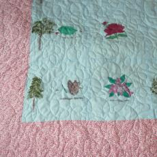 Sharon's Painted Quilt