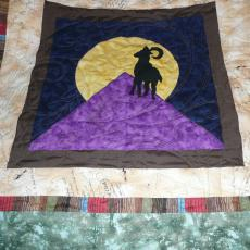 Sharon's Lewis and Clark Quilt