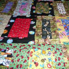 Sid's Bug Quilt