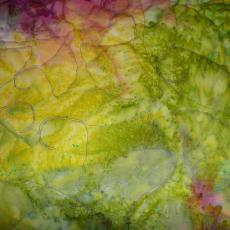 Susan's Mystery Quilt backing