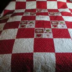 Wrennie's Birthday Quilt