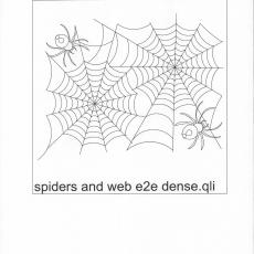 NH-spiders-and-web-e2e-dense-C