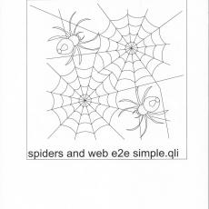 NH-spiders-and-web-e2e-simple-C