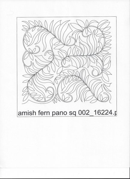 KD-amish-fern-pano-sq-002-C