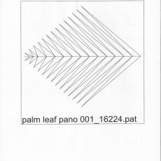 KD-palm-leaf-pano-001-C