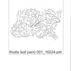 KD - thistle leaf pano 001     C
