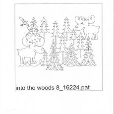 KD-into-the-woods-8-C