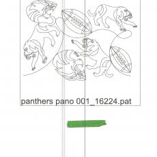Panthers Pano 001